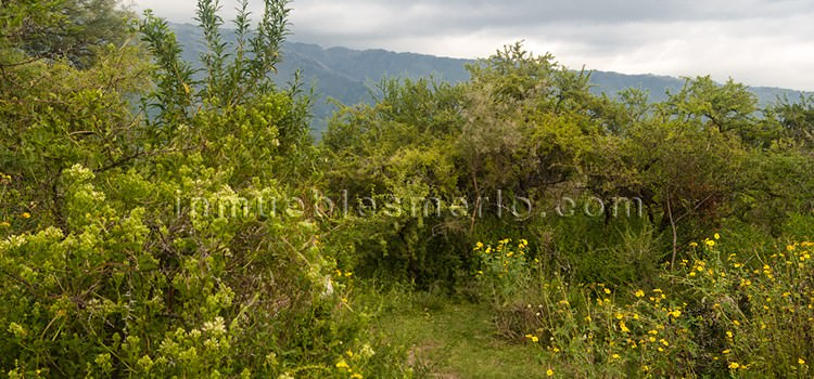 Terreno en Cerro de Oro Merlo San Luis