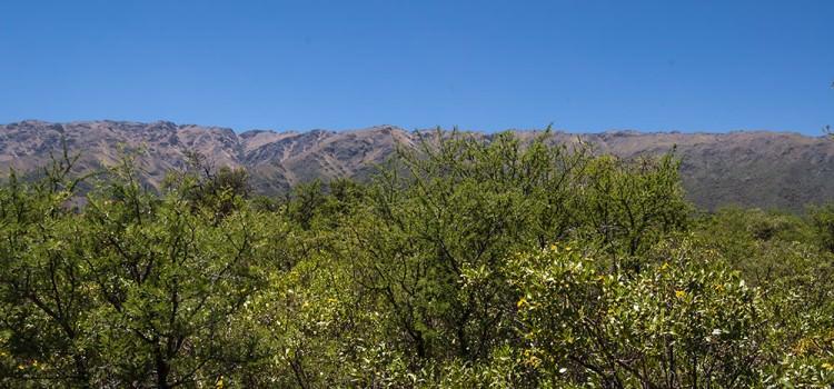 Vista a las Sierras desde el Lote
