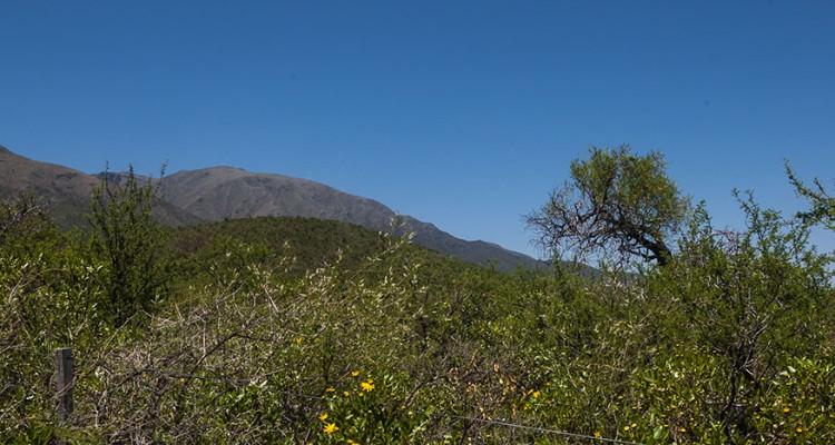 Vista desde el Lote hacia las Sierras de Carpintería
