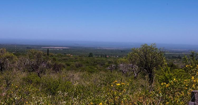 Vista desde el Lote al Valle de Conlara, Carpintería, San Luis
