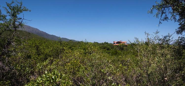 Terreno en Carpintería Merlo San Luis de 6800 m2